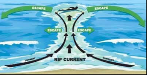 how to escape a rip current